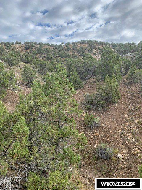 Lot 85 Red Canyon Road - Photo 1