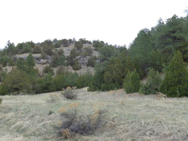 Track 12 Lake Side Drive, Guernsey, WY 82214 (MLS #20201468) :: Lisa Burridge & Associates Real Estate
