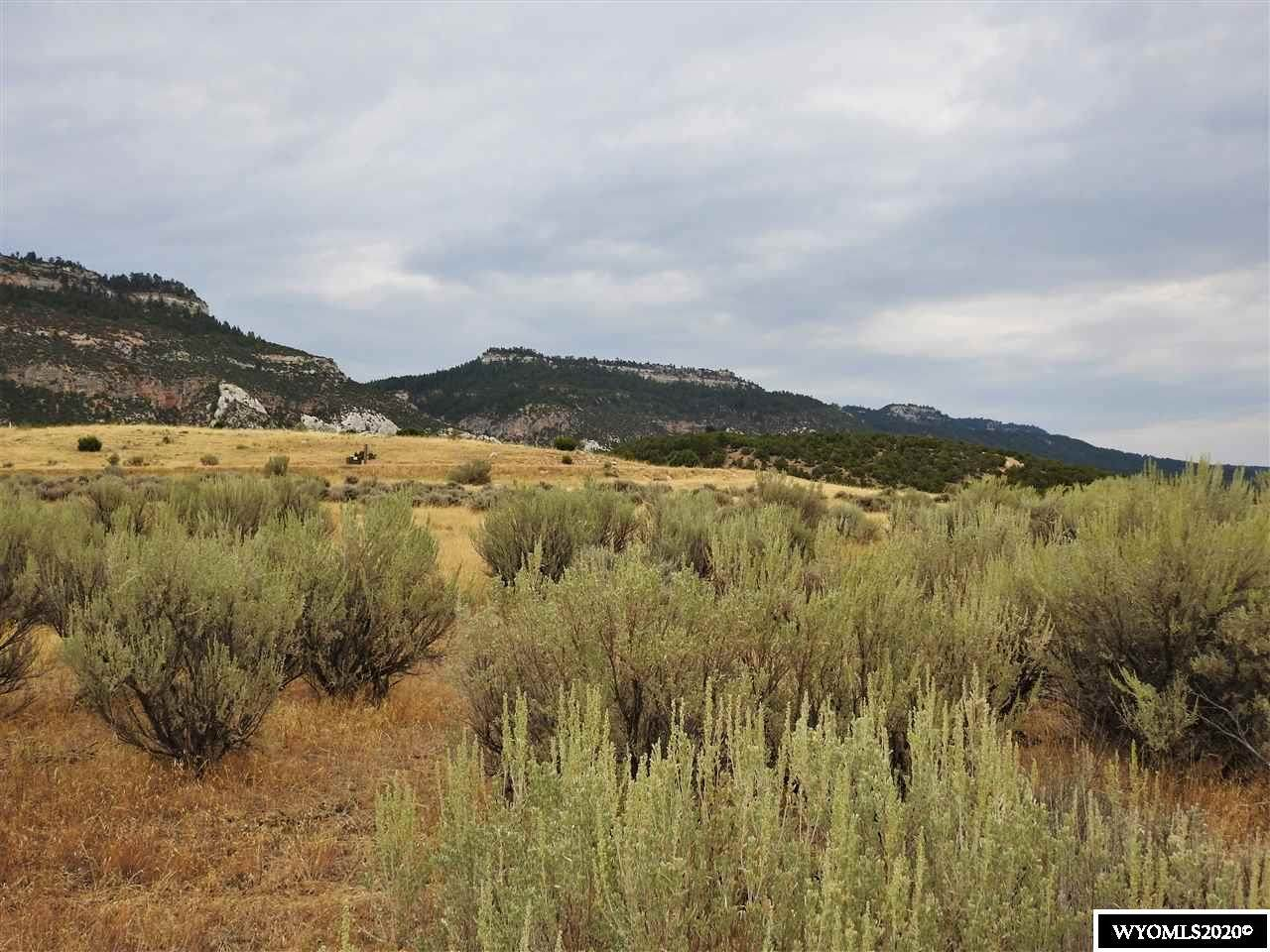 116 & 120 Deer Trail - Photo 1
