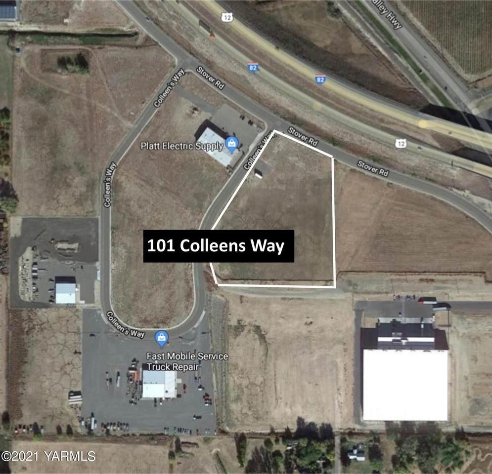 101 Colleens Way - Photo 1