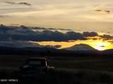 3525 Tecumseh Rd - Photo 31