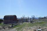 716 80th Ave - Photo 4
