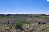 TBD Dry Pataha Creek - Photo 13