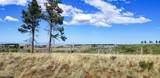 TBD Dry Pataha Creek - Photo 17
