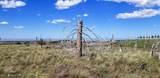 TBD Dry Pataha Creek - Photo 27