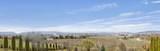806 Mesa Vista Pl - Photo 29