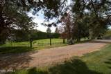 2706 86th Ave - Photo 54