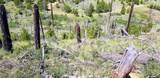 TBD Dry Pataha Creek - Photo 12