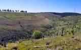 TBD Dry Pataha Creek - Photo 19