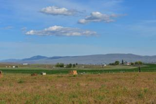NKA Freimuth Rd, Selah, WA 98942 (MLS #17-1228) :: Heritage Moultray Real Estate Services