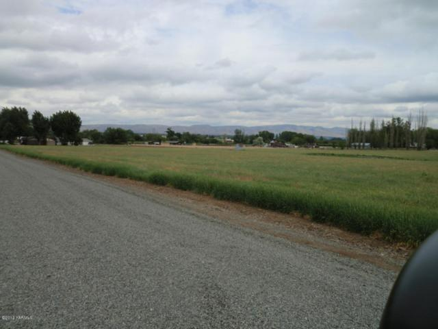 2401 Mccullough Rd Lot #4, Yakima, WA 98903 (MLS #16-71) :: Joanne Melton Real Estate Team