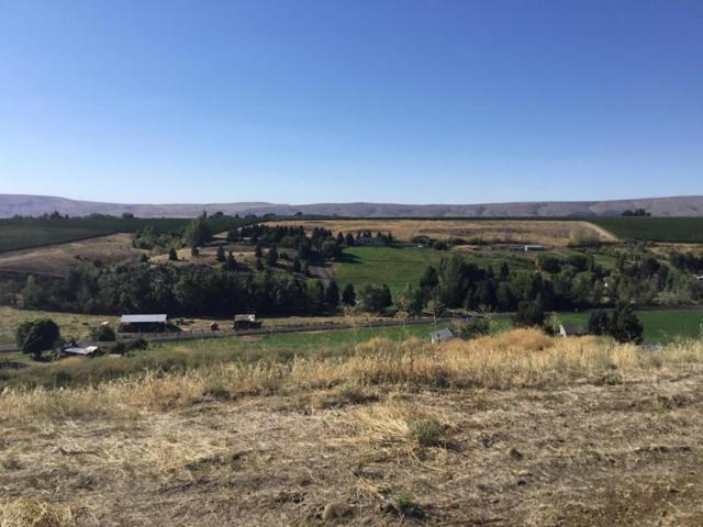250 Aquila Rd, Yakima, WA 98908 (MLS #17-2043) :: Heritage Moultray Real Estate Services