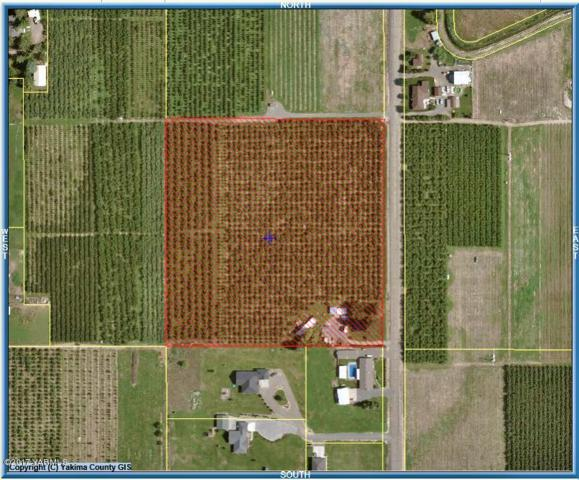NKA Bluegoose Rd, Zillah, WA 98953 (MLS #17-2069) :: Results Realty Group