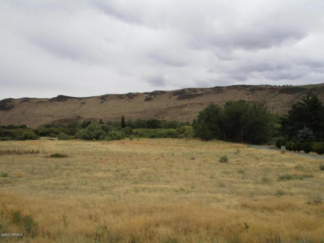 NKA Crystal Ln, Naches, WA 98937 (MLS #17-2587) :: Heritage Moultray Real Estate Services