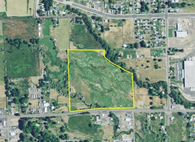nna W Ahtanum Rd, Union Gap, WA 98903 (MLS #17-266) :: Results Realty Group
