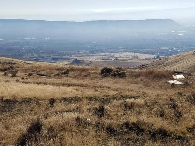 NKA Roza Hill Dr, Yakima, WA 98901 (MLS #17-2980) :: Heritage Moultray Real Estate Services