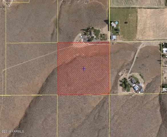 NNA Meadowlark Ln, Moxee, WA 98936 (MLS #18-1820) :: Results Realty Group