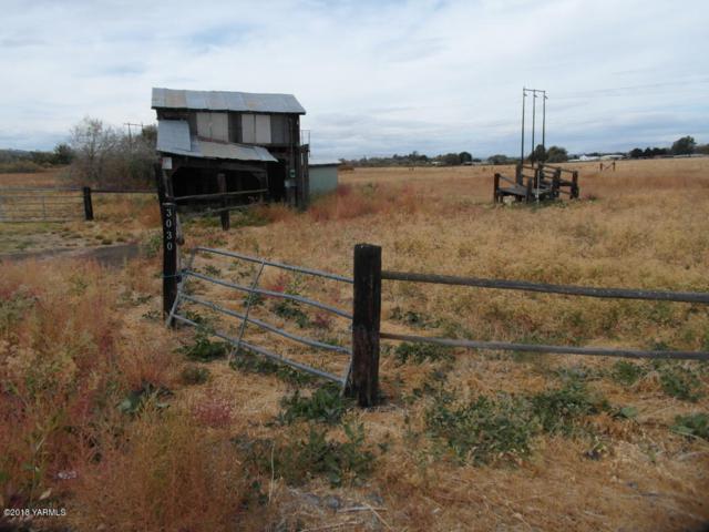 NKA Goodman Rd, Union Gap, WA 98903 (MLS #18-2466) :: Results Realty Group