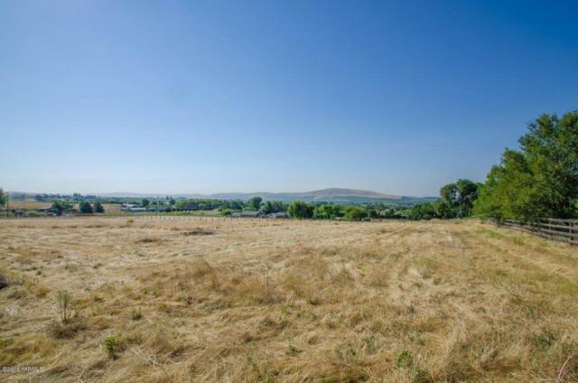 NKA St Hilaire Rd, Yakima, WA 98901 (MLS #18-345) :: Heritage Moultray Real Estate Services