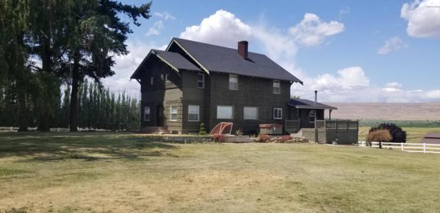 6591 W Wapato Rd, Wapato, WA 98951 (MLS #19-1697) :: Heritage Moultray Real Estate Services