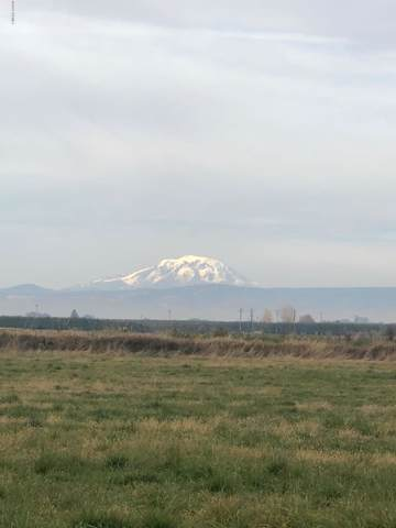 NNK Ashue Rd, Wapato, WA 98951 (MLS #19-2972) :: Heritage Moultray Real Estate Services
