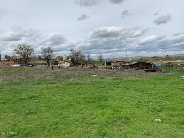13905 Yakima Valley Hwy, Zillah, WA 98953 (MLS #19-831) :: Results Realty Group