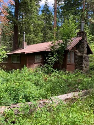 2223 Old River Rd, Naches, WA 98937 (MLS #20-1377) :: Amy Maib - Yakima's Rescue Realtor