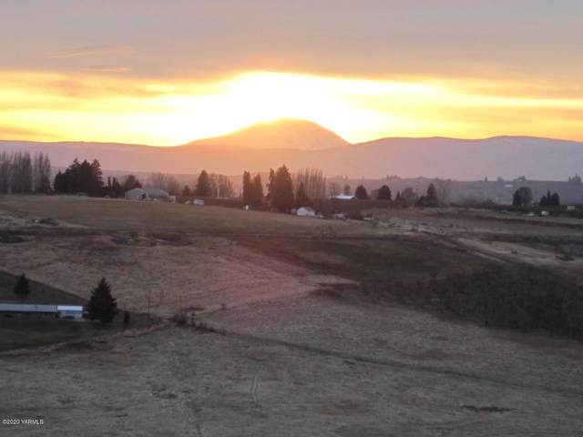 1564 Vilhalla Lp, Selah, WA 98942 (MLS #20-1461) :: Heritage Moultray Real Estate Services