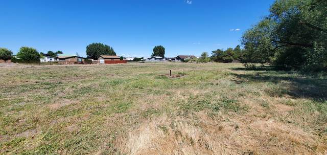 3351 S 101st Ave, Yakima, WA 98903 (MLS #20-1528) :: Heritage Moultray Real Estate Services