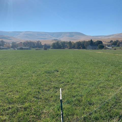 160204 W Richards Rd, Prosser, WA 99350 (MLS #20-2425) :: Heritage Moultray Real Estate Services