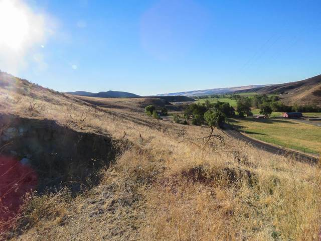 NKA N Wenas Rd, Selah, WA 98942 (MLS #21-634) :: Heritage Moultray Real Estate Services