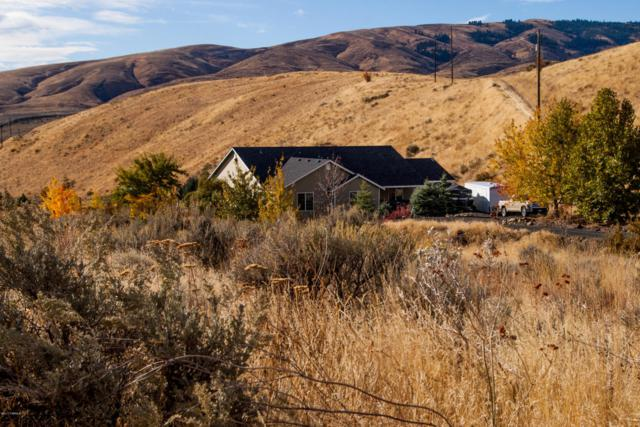 890 Elk Ridge Ln, Naches, WA 98937 (MLS #17-2669) :: Results Realty Group