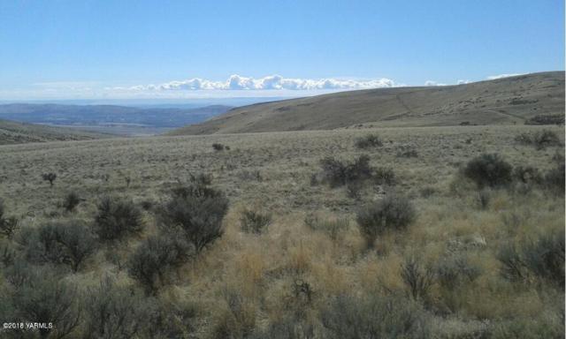 NKA Bohosky Rd, Yakima, WA 98901 (MLS #18-2813) :: Heritage Moultray Real Estate Services