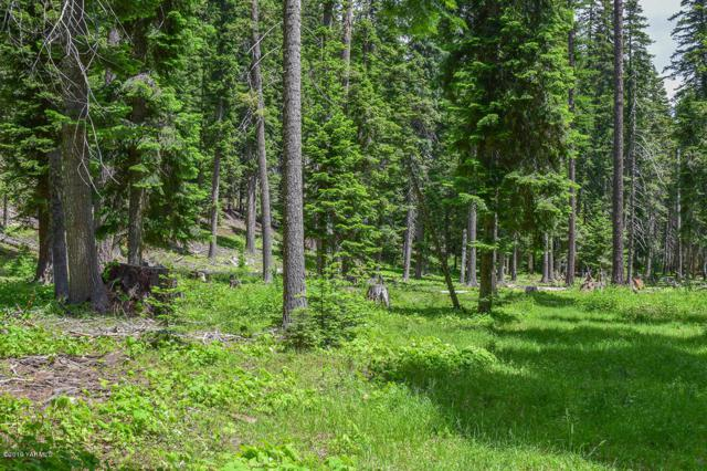 NNA Snow Goose Ln, Naches, WA 98937 (MLS #19-1444) :: Results Realty Group