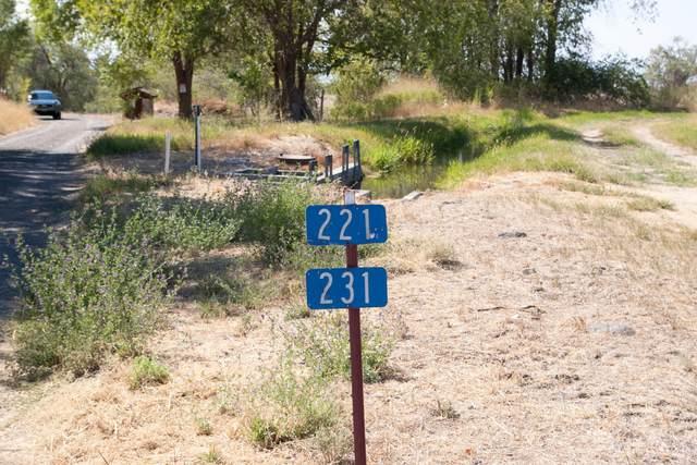 231 Windy Ridge Ln, Moxee, WA 98936 (MLS #20-1926) :: Heritage Moultray Real Estate Services