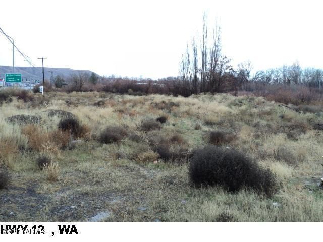 NKA Us-12 Hwy, Naches, WA 98937 (MLS #17-2725) :: Results Realty Group