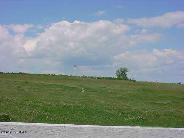 NNA Cottonwood Rd, Yakima, WA 98908 (MLS #19-2329) :: Joanne Melton Real Estate Team