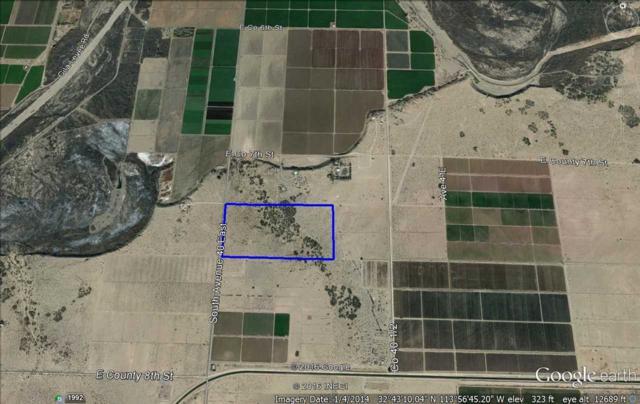 Ave 40 E, Tacna, AZ  (MLS #121728) :: Group 46:10 Yuma