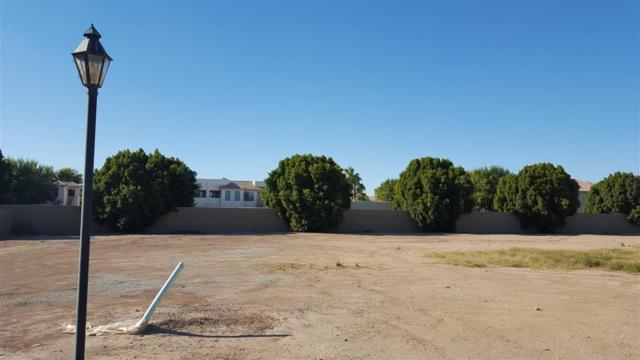 3652 W Brandi Ln, Yuma, AZ 85364 (MLS #127880) :: Group 46:10 Yuma