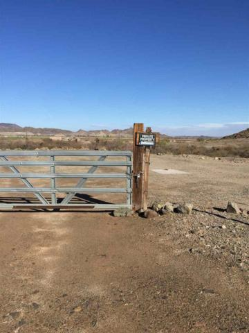 0000 N Laguna Dam Rd, Yuma, AZ 85365 (MLS #130194) :: Group 46:10 Yuma