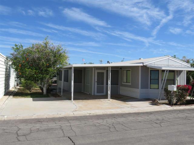 3445 S Castle Dr, Yuma, AZ 85365 (MLS #132922) :: Group 46:10 Yuma