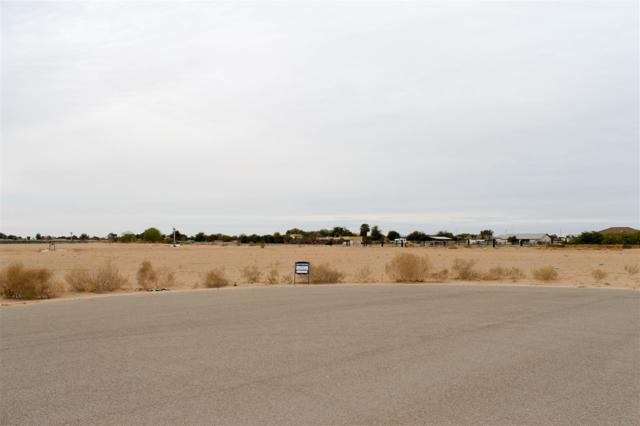 Ave 5 E County 14 1/2 St, Yuma, AZ 33701 (MLS #133132) :: Group 46:10 Yuma