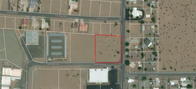 29856 Butterfield Plaza, Wellton, AZ 85356 (MLS #133414) :: Group 46:10 Yuma