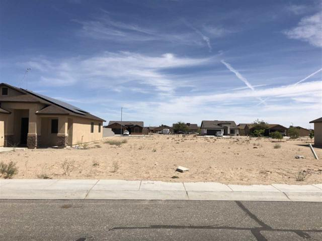 459 N Amanda Aguirre Ct, San Luis, AZ 85349 (MLS #133429) :: Group 46:10 Yuma
