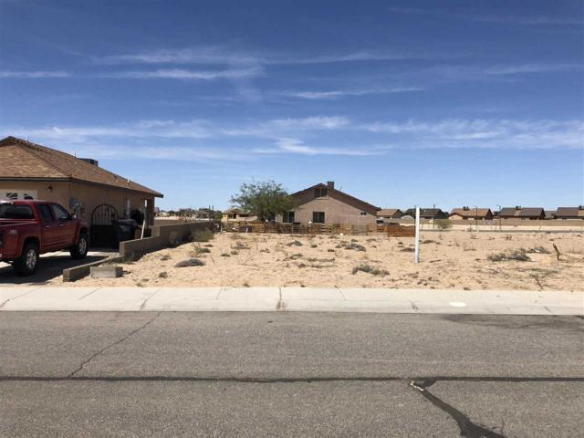 290 N Escamilla Ct, San Luis, AZ 85349 (MLS #133430) :: Group 46:10 Yuma