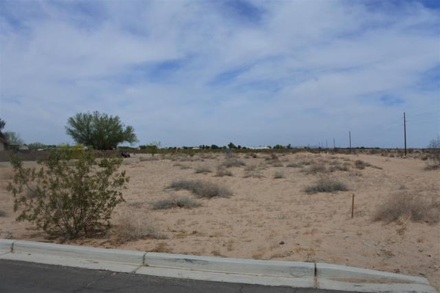 4894 E County 15 1/2 St, Yuma, AZ 85367 (MLS #133615) :: Group 46:10 Yuma