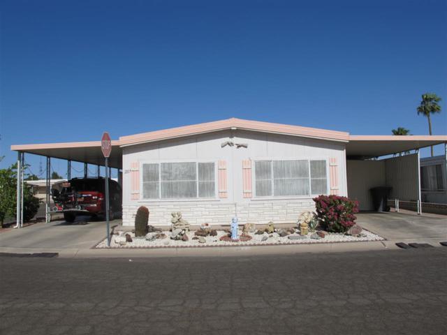 2117 S Cottontail Ave, Yuma, AZ 85364 (MLS #133785) :: Group 46:10 Yuma
