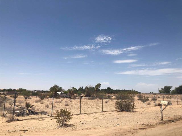 3625 1/2 E County 18 St, Yuma, AZ 85365 (MLS #135154) :: Group 46:10 Yuma