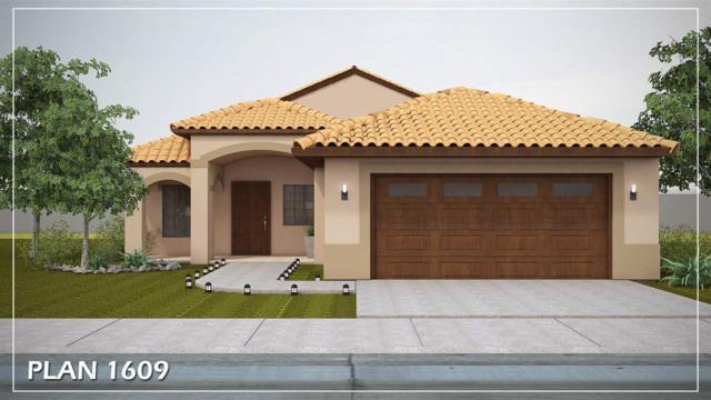 4168 W Camille Pl, Yuma, AZ 85364 (MLS #135680) :: Group 46:10 Yuma