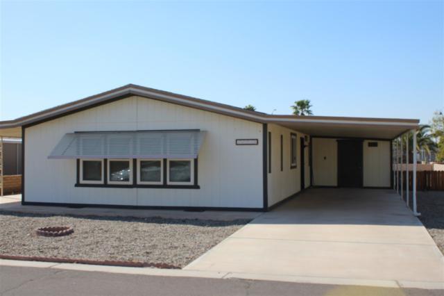 11230 S Cactus Wren, Yuma, AZ 85365 (MLS #135700) :: Group 46:10 Yuma